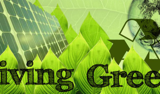 living-green-coaching