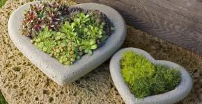 Unique-Container-Gardening-Ideas