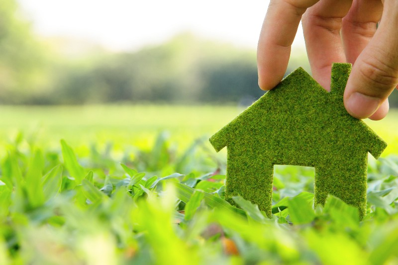 The 7 Most Affordable and Eco-Friendly Updates You Can Do For Your Home
