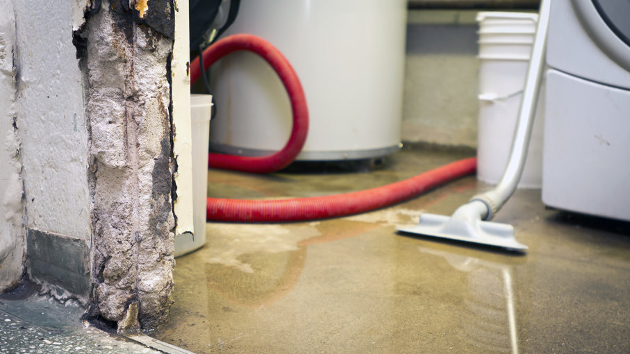 5 Spring Inspections to Ensure a Waterproof Basement