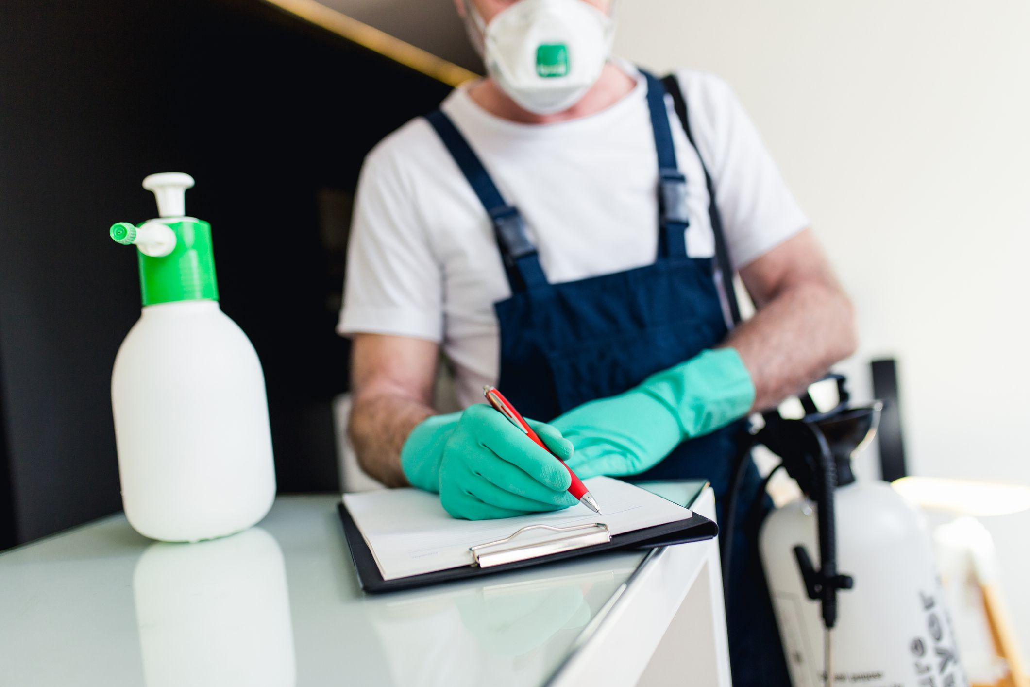 Reasons To Hire a Professional For Bug Control